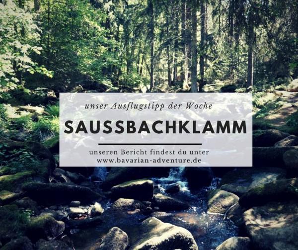 ausflustipp_saussbachklamm